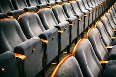 Καφετιές ξύλινες καρέκλες στην αίθουσα συνεδριάσεων χωρίς ανθρώπους Στοκ φωτογραφίες με δικαίωμα ελεύθερης χρήσης