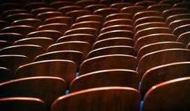 Καφετιές ξύλινες καρέκλες στην αίθουσα συνεδριάσεων χωρίς ανθρώπους Στοκ Εικόνες