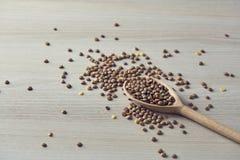 Καφετιές φακές με το ξύλινο κουτάλι στοκ εικόνες