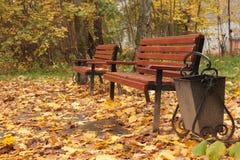 καφετιοί ξύλινοι πάγκοι στον κήπο Στοκ Φωτογραφία
