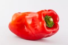 Καψικό πιπεριών κουδουνιών annuum Στοκ Φωτογραφία