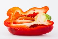 Καψικό πιπεριών κουδουνιών annuum Στοκ φωτογραφία με δικαίωμα ελεύθερης χρήσης