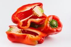 Καψικό πιπεριών κουδουνιών annuum Στοκ εικόνες με δικαίωμα ελεύθερης χρήσης
