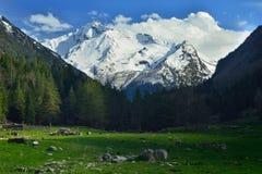 Καύκασος καλύπτει το shurovky ushba ουρανού βουνών βουνών τοπίων Στοκ Φωτογραφία