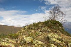 Καύκασος Σημύδα ουρανού και βουνών Στοκ Εικόνες