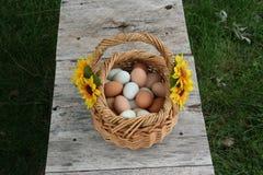 Καλάθια αυγών Στοκ Φωτογραφία