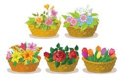 Καλάθια με τα λουλούδια καθορισμένα Στοκ φωτογραφίες με δικαίωμα ελεύθερης χρήσης