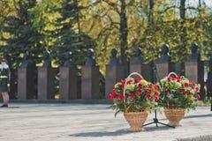 Καλάθια με τα λουλούδια Στοκ Φωτογραφία