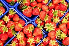 Καλάθια των φραουλών Στοκ φωτογραφίες με δικαίωμα ελεύθερης χρήσης