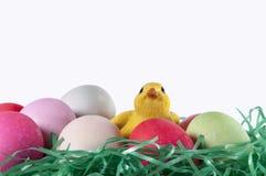 Καλάθι αυγών Πάσχας, νεοσσοί Στοκ φωτογραφία με δικαίωμα ελεύθερης χρήσης