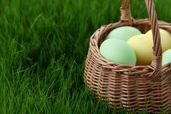Καλάθι αυγών Πάσχας στο λιβάδι χλόης Στοκ Εικόνα