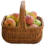 καλάθι μήλων φρέσκο Στοκ Φωτογραφία