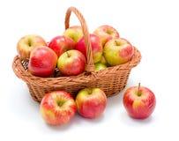καλάθι μήλων ώριμο Στοκ Εικόνες