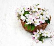 Καλάθι με τα άνθη της Apple Στοκ εικόνες με δικαίωμα ελεύθερης χρήσης