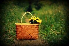 Καλάθι με τα κίτρινα λουλούδια Στοκ φωτογραφία με δικαίωμα ελεύθερης χρήσης