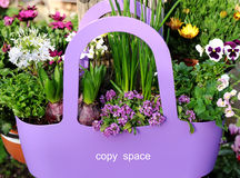 Καλάθι με τα λουλούδια και το διάστημα αντιγράφων Στοκ Φωτογραφίες