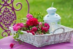 Καλάθι με τα τριαντάφυλλα στοκ εικόνες