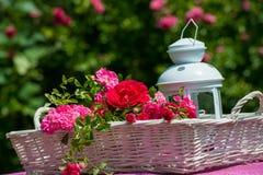 Καλάθι με τα τριαντάφυλλα στοκ φωτογραφίες με δικαίωμα ελεύθερης χρήσης