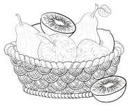 Καλάθι με τα φρούτα, περιγράμματα Στοκ Εικόνα