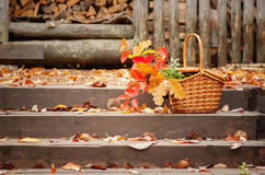 Καλάθι με τα φύλλα φθινοπώρου στα βήματα Στοκ φωτογραφίες με δικαίωμα ελεύθερης χρήσης