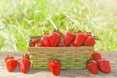 Καλάθι με τις φράουλες Στοκ εικόνα με δικαίωμα ελεύθερης χρήσης