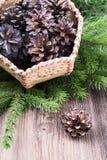 Καλάθι με τους κώνους πεύκων στο ξύλινο υπόβαθρο Στοκ φωτογραφίες με δικαίωμα ελεύθερης χρήσης