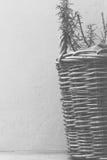 Καλάθι με το δεντρολίβανο στοκ εικόνα