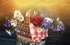 Καλάθι με το viburnum, και wildflowers bluebells και μαργαρίτες σε μια κόκκινη πετσέτα στον ήλιο Ξύλινη ανασκόπηση Στοκ φωτογραφία με δικαίωμα ελεύθερης χρήσης