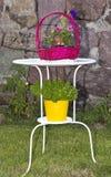 Καλάθι λουλουδιών Στοκ Φωτογραφία