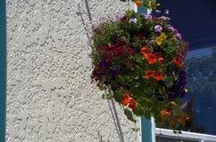 Καλάθι λουλουδιών Στοκ φωτογραφίες με δικαίωμα ελεύθερης χρήσης