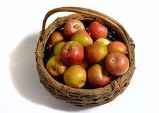 Καλάθι της Apple και μπουκάλι του μηλίτη. Στοκ φωτογραφία με δικαίωμα ελεύθερης χρήσης