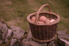 Καλάθι των αυγών Στοκ Φωτογραφίες