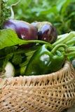 Καλάθι των λαχανικών Στοκ Εικόνες