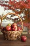 Καλάθι των μήλων στον πίνακα Στοκ Εικόνες