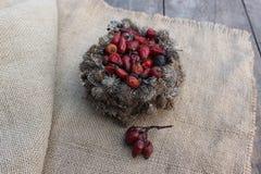 Καλάθι των σπόρων burdock και των ροδαλών ισχίων Στοκ Φωτογραφίες