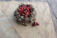 Καλάθι των σπόρων burdock και των ροδαλών ισχίων Στοκ φωτογραφίες με δικαίωμα ελεύθερης χρήσης