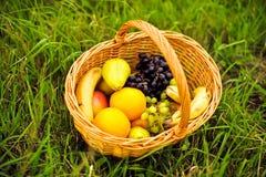 Καλάθι φρούτων στην πράσινη χλόη Στοκ Φωτογραφίες