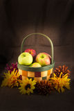 Καλάθι φρούτων των μήλων και των λουλουδιών Στοκ Φωτογραφίες