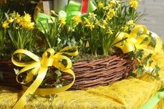 Καλάθι φλοιωμάτων και κίτρινος βρόχος Στοκ Φωτογραφίες