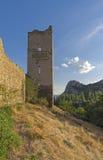 Καλά-συντηρημένος πύργος του μεσαιωνικού φρουρίου Στοκ Φωτογραφία