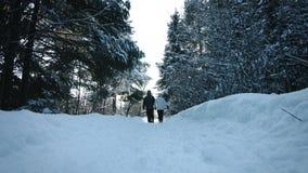 Καλά χέρια περπατήματος και εκμετάλλευσης ζεύγους κατά τη διάρκεια της όμορφης ημέρας του χειμώνα απόθεμα βίντεο