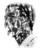 Καλές Τέχνες πορτρέτου Στοκ Εικόνες