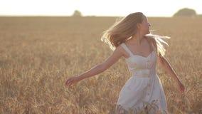 Καλή γυναίκα με την πετώντας τρίχα στον τομέα στο ηλιοβασίλεμα απόθεμα βίντεο