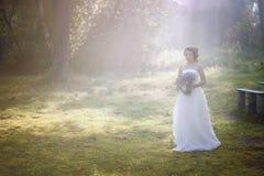 Καλή νύφη υπαίθρια σε ένα δάσος Στοκ Φωτογραφίες