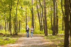 Καλή οικογένεια που περπατά στο δασικό υγιή τρόπο ζωής φθινοπώρου Στοκ εικόνες με δικαίωμα ελεύθερης χρήσης