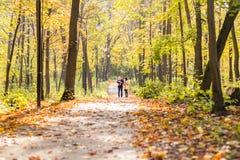 Καλή οικογένεια που περπατά στο δασικό υγιή τρόπο ζωής φθινοπώρου Στοκ Εικόνες