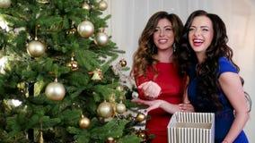 Καλή χρονιά, ευτυχή κορίτσια το βράδυ ντύνει τη συζήτηση, γέλιο κατά τη διάρκεια της διακόσμησης ενός χριστουγεννιάτικου δέντρου  φιλμ μικρού μήκους