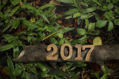 Καλή χρονιά 2017, ξύλινη ιδέα αριθμού Στοκ Εικόνες