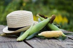 Καλαμπόκι και καπέλο Στοκ εικόνα με δικαίωμα ελεύθερης χρήσης