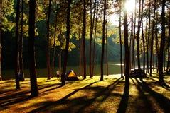 Καλημέρα Στοκ εικόνες με δικαίωμα ελεύθερης χρήσης